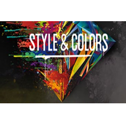 logo-style-and-colors